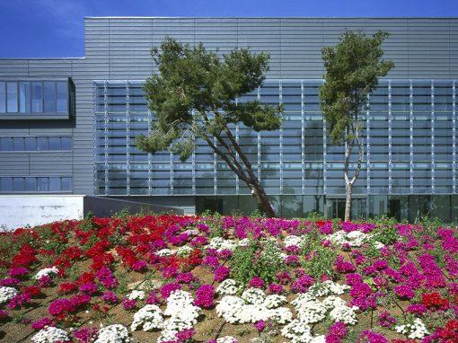 Instituto de Ciencias Fotónicas